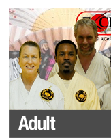 adult martial arts in renton