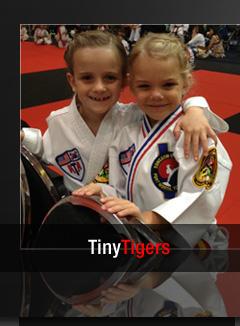 tiny tigers karate program