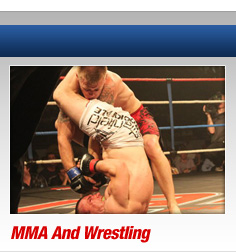 Perth Mixed martial arts